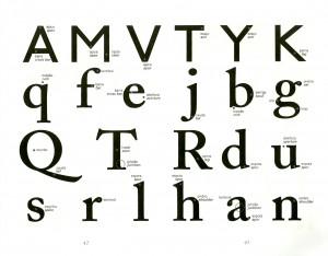 Anatomia Tipográfica por Claudio Rocha